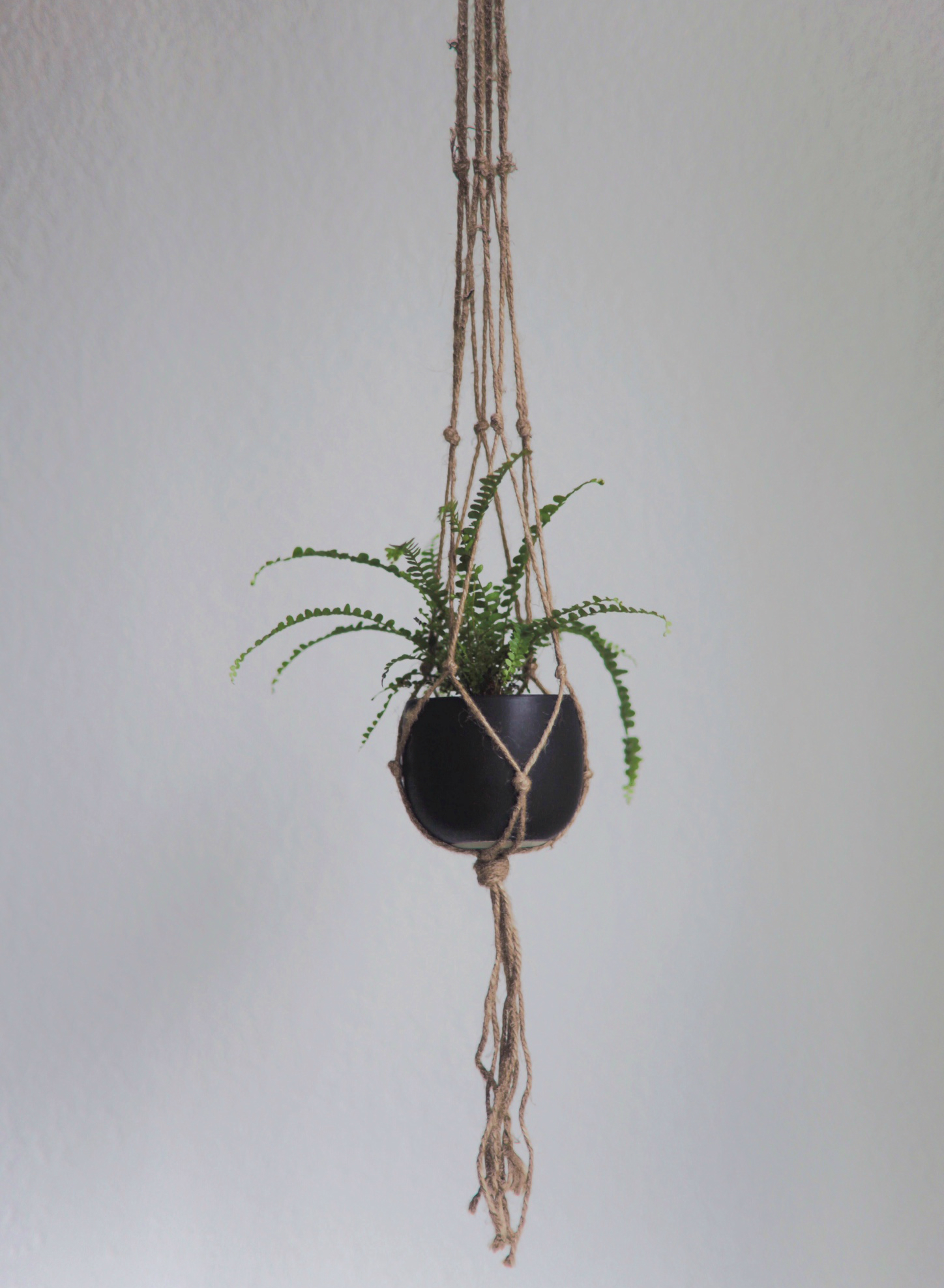 Video Diy Macrame Plant Hanger